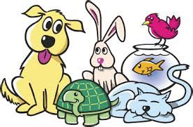 Essay On My Favorite Pet Dog - Describe your pet or your